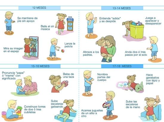 desarrollo del bebe mes a mes pdf