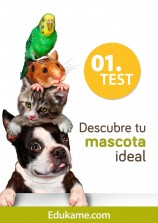 Test: Descubre tu mascota ideal