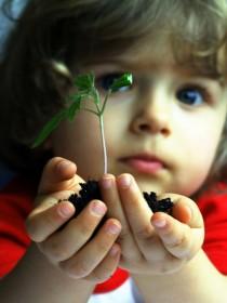 Niños con alergia al polen
