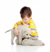 Primeros pasos para adoptar una mascota con niños