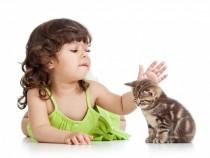 3 razones para tener una mascota en casa