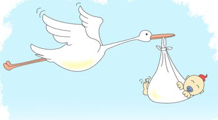 cigueña ¿Por qué se dice que la cigüeña trae a los bebés?