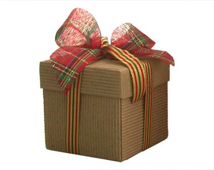 El mejor regalo de navidad ed kame for Productos de navidad