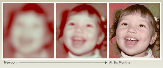 tiny eyes ¿Cómo ven los bebés? Test de visión infantil